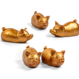 LIV-132, Golden piggy, fridge magnets in piggy shape, set of 5